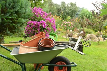 Busy Gardening