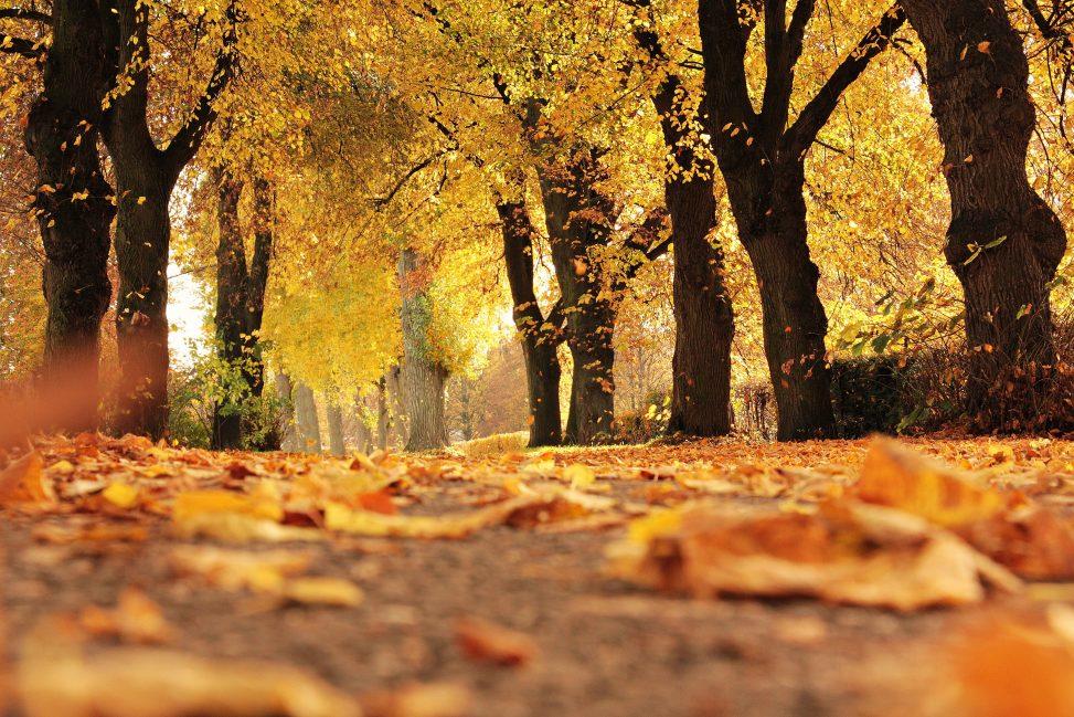 October - Lovely!