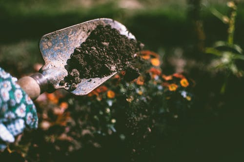 Person Digging on Soil Using Garden Shovel - Lisa Fotios [Pexels]